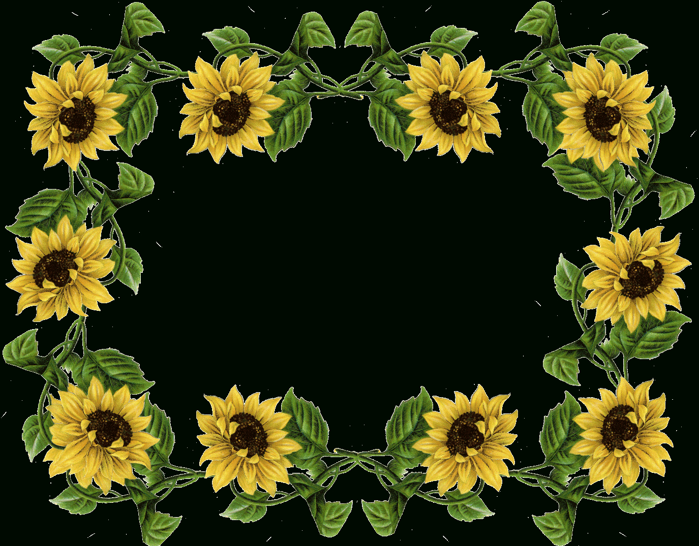 Sunflower Border Clip Art Free Clipart Collection - Free Printable Sunflower Stationery