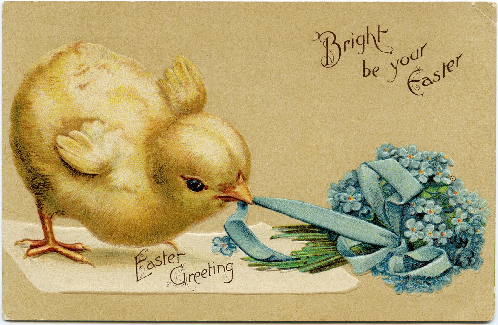 Vintage Easter Chick Postcard ~ Free Digital Image - Old Design Shop - Free Printable Vintage Easter Images
